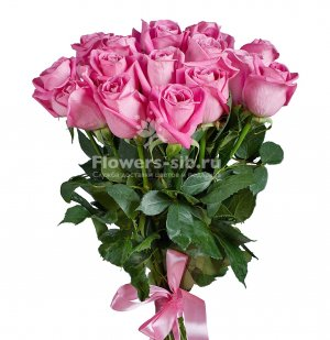 BOUQUET OF 17 ROSES